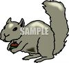 A Squirrel With A Acorn clipart