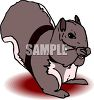 A Squirrel Eating A Nut clipart