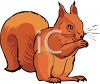 A Red Tree Squirrel clipart