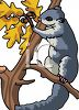 A North American Grey Squirrel clipart