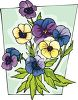 Colorful Pansy Flower Plant clipart