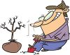 Man Planting A Tree clipart