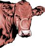 Realistic Dairy Cow  clipart