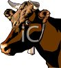 Realistic Bull Wearing a Bell clipart