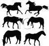 Collection of Horse Silhouettes clipart
