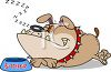 Bulldog Snoring by His Food Dish clipart