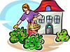 Woman Picking Flowers in Her Yard clipart