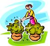 Woman Trimming Shrubs in Her Yard clipart
