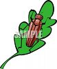 Brown Beetle on a Leaf clipart