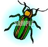 Green Beetle clipart