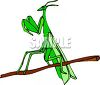 Preying Mantis on a Twig clipart