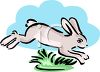Leaping Rabbit clipart