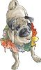 Pug Puppy Wearing a Flower Lei clipart