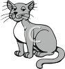 Gray and White Farm Cat clipart