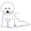 Cartoon Bichon Frise Pup clipart