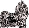 Cartoon Pekingese clipart