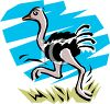 Cute Ostrich Running in the Grass clipart