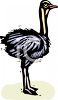 Mad Ostrich clipart