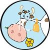 Cartoon Dairy Cow  in a Logo Element clipart