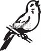 Black and White Bird Singing on a Branch clipart