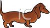 Breed of Dog-Dachshund clipart