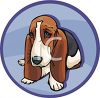 Breed of Dog-Basset Hound clipart