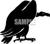 Vulture or buzzard silhouette clipart