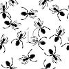 Black Ants Background clipart