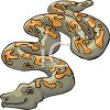 Poisonous Snake clipart
