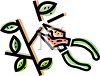 Pruning a Branch clipart