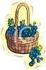 Basket of Grapes for Wine clipart