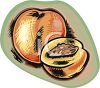 Stylized Peach with a Pit Showing clipart