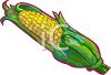 corn on the cob image