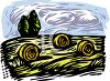 Rolled Bales of Hay in a Newly Mown Field clipart