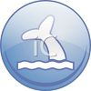 Whale Watching Icon clipart