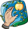 Hand Reaching to Pick an Apple clipart