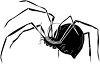Spider with a Bulbous Body clipart