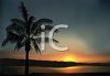 Realistic Sun Setting on a Tropical Beach clipart