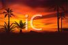 Realistic Tropical Beach with an Orange Sky clipart