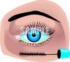 Pretty Blue Eye with Freshly Applied Mascara clipart