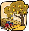 Apple Tree and a Tractor in a Tilled Field clipart