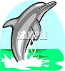 Beautiful Dolphin Splashing Up Out of the Ocean clipart