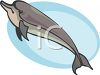 Cartoon of a Porpoise clipart