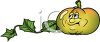 Cartoon of Healthy Food-A Pumpkin Still on the Vine clipart