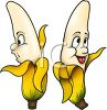 Cartoon of Healthy Food-Potassium Rich Bananas clipart