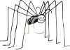 Creepy Spider with Really Long Legs clipart