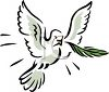 Dove with an Olive Branch in It's Mouth Depicting Peace clipart