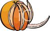 Peeled Orange Segments clipart