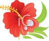 Realistic Hibiscus Flower Drawing clipart