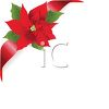 Poinsettia with Red Ribbon clipart